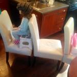 Rebecca Fox Chair Photo